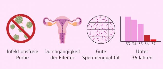 Imagen: Anforderungen künstliche Befruchtung
