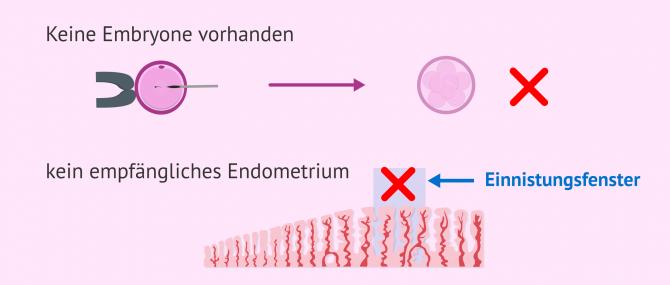 Imagen: Embryotransfer abbrechen