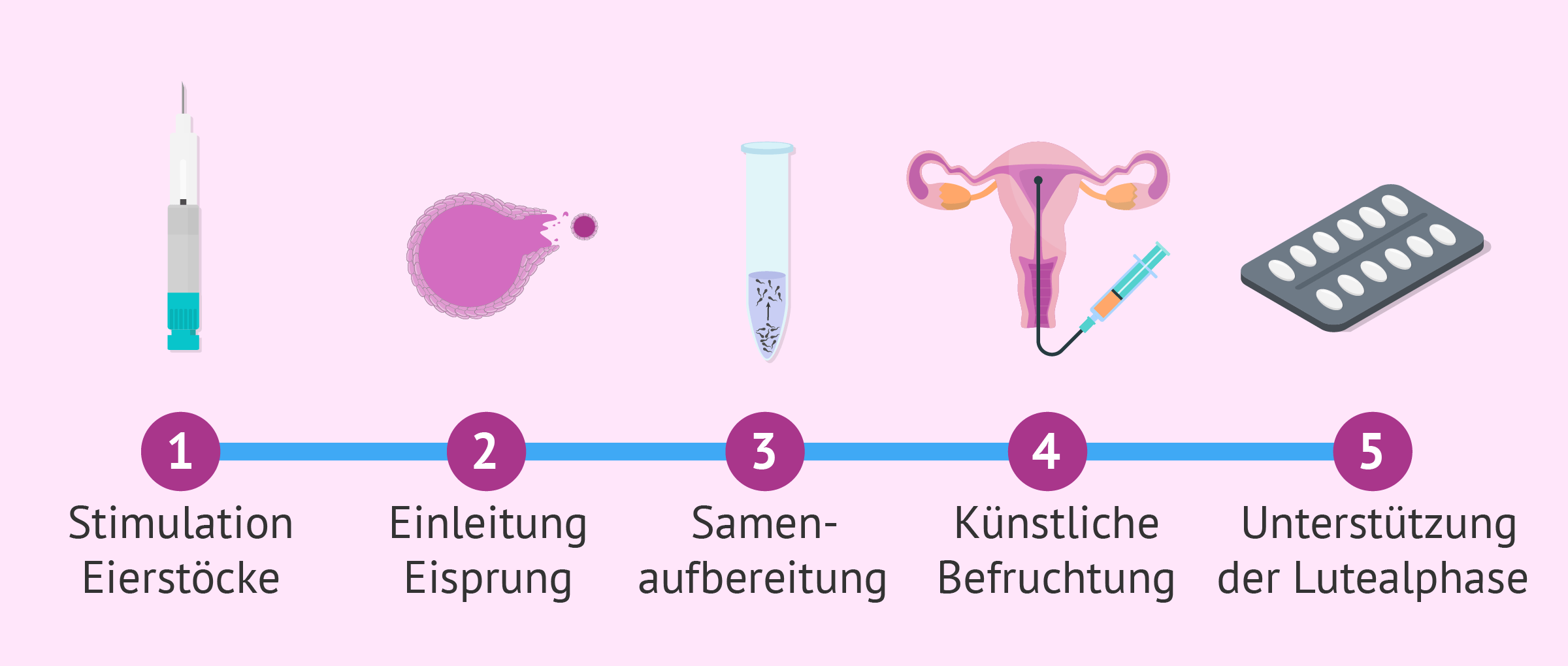 Die künstliche Befruchtung