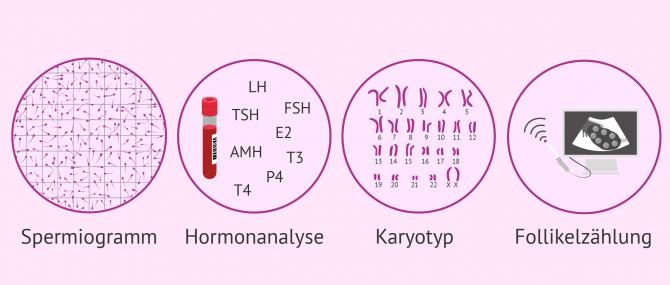 Imagen: Welche Proben bei der Fruchtbarkeitsuntersuchung gemacht werden