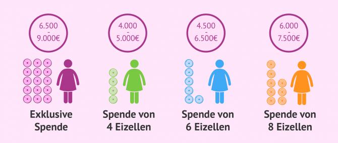 Imagen: Kosten einer IVF-Behandlung mit Ovodonation