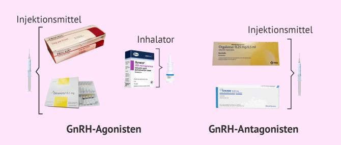 Imagen: GnRH-Medikamente: Agonisten und Antagonisten