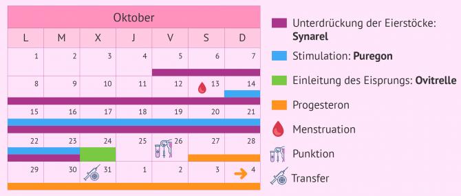 Imagen: Kalender für eine lange Stimulation