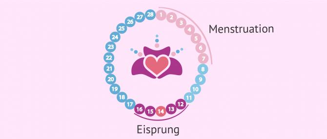 Imagen: Beginn des ersten Schwangerschaftsmonats