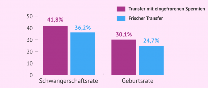 Imagen: Erfolgsraten in der IVF mit Spendersamen