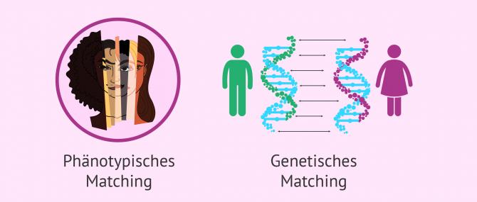 Imagen: Phänotypisches und genetische Matching der Gametenspender
