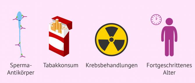 Imagen: Ursachen Astenozoospermie