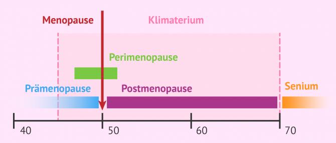 Imagen: Phasen im Klimaterium einer Frau