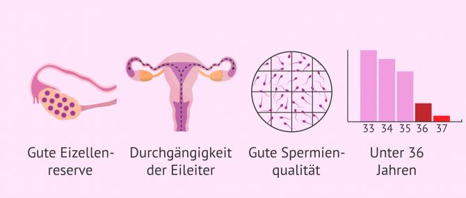 Imagen: Voraussetzungen für eine künstliche Befruchtung
