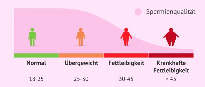 Imagen: BMI und Spermienqualität