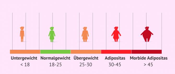 Imagen: BMI in Bezug auf die Schwangerschaft