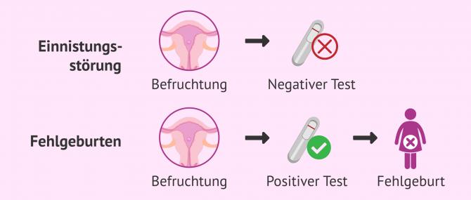 Imagen: Infertilität aufgrund von Einnistungsstörungen und Fehlgeburt