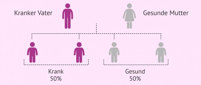 Imagen: Vererbung autosomal dominanter Krankheiten