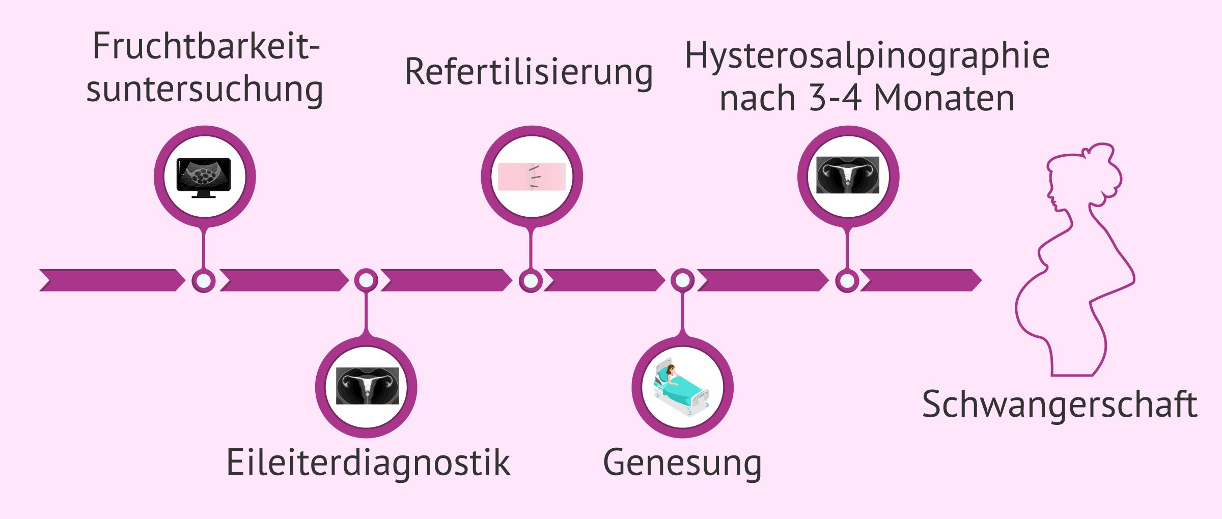 Behandlungsschritte bei Refertilisierung