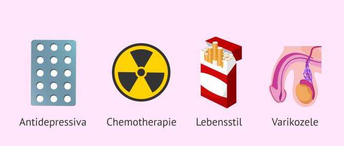 Imagen: Ursachen der Oligoasthenoteratozoospermie