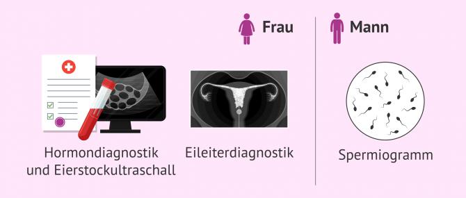 Imagen: Voruntersuchungen bei der Refertilisierung