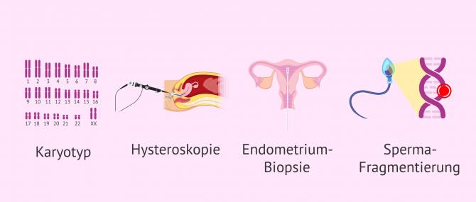 Imagen: Zusätzliche Tests bei der Fruchtbarkeitsuntersuchung