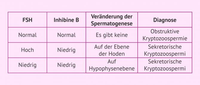 Imagen: Hormontest zur Diagnose der Kryptozoospermie