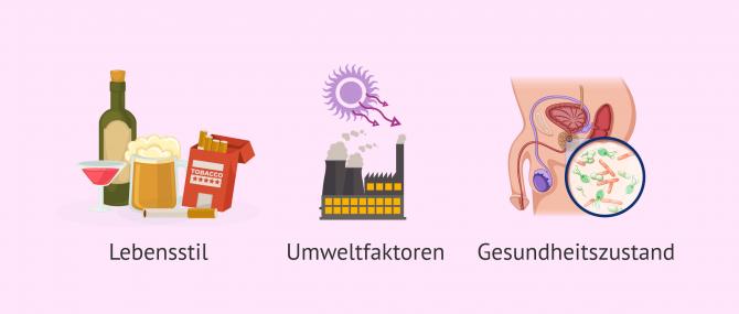 Imagen: Ursachen für oxidativen Stress im Sperma